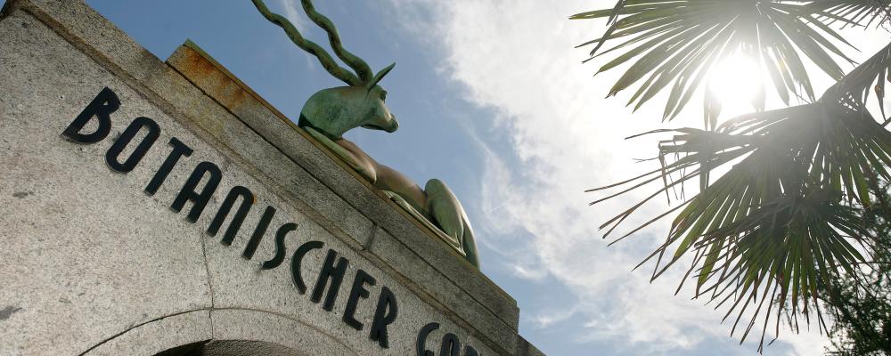 G_Bern-Botanischer-Garten-der-Universtitaet2