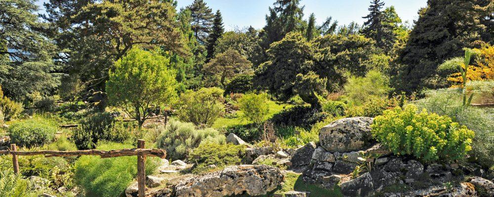 G_Geneve_Conservatoire-Et-Jardin-Botanique-19